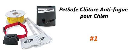 PetSafe Clôture Anti fugue pour Chien