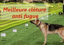 meilleur clôture anti fugue chien