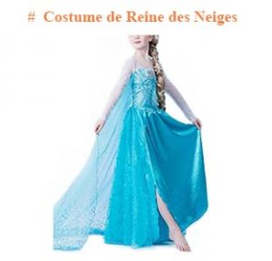 Costume de Reine des Neiges