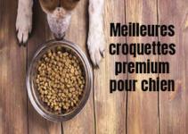 meilleures croquuettes premium pour chien